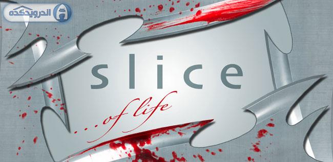 دانلود بازی هیجان انگیز برش Slice HD v1.1