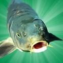 دانلود بازی شبیه سازی ماهیگیری Carp Fishing Simulator v1.9.8.3 اندروید