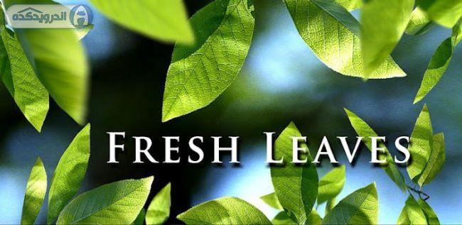 دانلود لایو والپیپر برگ های تازه Fresh Leaves v1.8