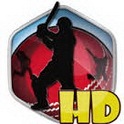 دانلود بازی کریکت Box Cricket 2014 HD v1.0