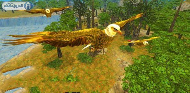 دانلود بازی شبیه ساز عقاب Eagle Simulator v1.0 اندروید