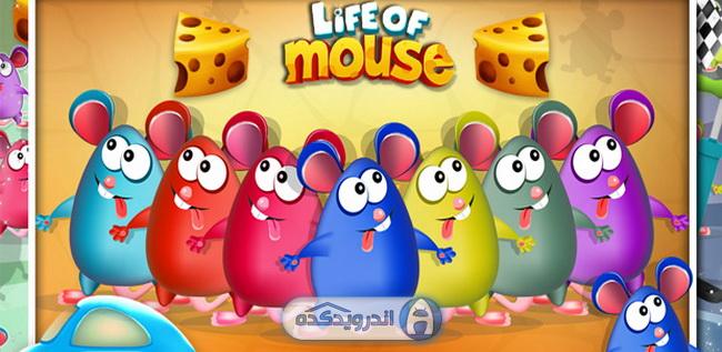دانلود بازی جذاب زندگی موش ها Life of Mouse v1.0 اندروید