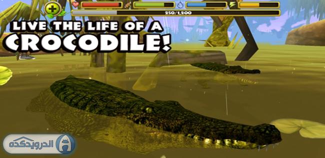 دانلود بازی حیات وحش Wildlife Simulator: Crocodile v1.0 اندروید