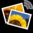 دانلود Digital Photo Frame Premium 11.1.0 بنرم افزار قاب عکس دیجیتال اندروید