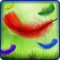 دانلود لایو والپیپر زیبای پرهای رنگی Feather Live Wallpaper HD Full v1.0