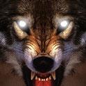 دانلود بازی زندگی گرگ Life Of Wolf 2014 v1.5 + تریلر