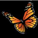 دانلود برنامه بهاران (ویژه نوروز) Baharan v1.0