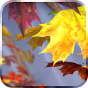 دانلود  Autumn Tree Live Wallpaper v1.15 برنامه تصویر زمینه متحرک درختان پاییزی اندروید