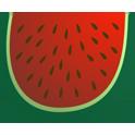 دانلود برنامه ۱۰ میوه پر خاصیت Mive Por Khasiyat v1.0