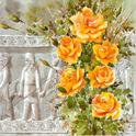 دانلود برنامه جشن های ایران باستان Jashne Irane Bastan v1.0