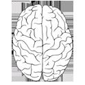 دانلود برنامه تست های شخصیت شناسی Personality Test v1.0