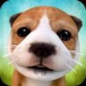 دانلود بازی شبیه ساز سگ Dog Simulator v2.2.2+mod اندروید