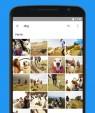 دانلود Google Photos 5.30.0.357810041 برنامه تصاویر گوگل اندروید