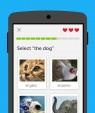 دانلود Duolingo: Learn Languages 4.81.4 برنامه آموزش زبان های خارجی اندروید