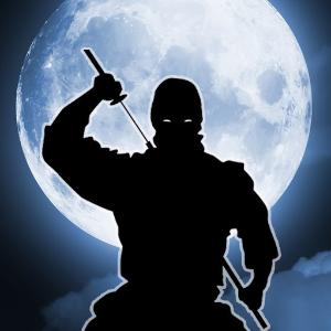 دانلود Amazing shadow ninja fight بازی شگفت انگیز مبارزه سایه های نینجا اندروید