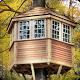 دانلود Can You Escape Tree House 1.0.7  بازی فرار از خانه درختی اندروید