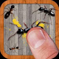 دانلود بازی مورچه کشی Ant Smasher, Best Free Game 9.54